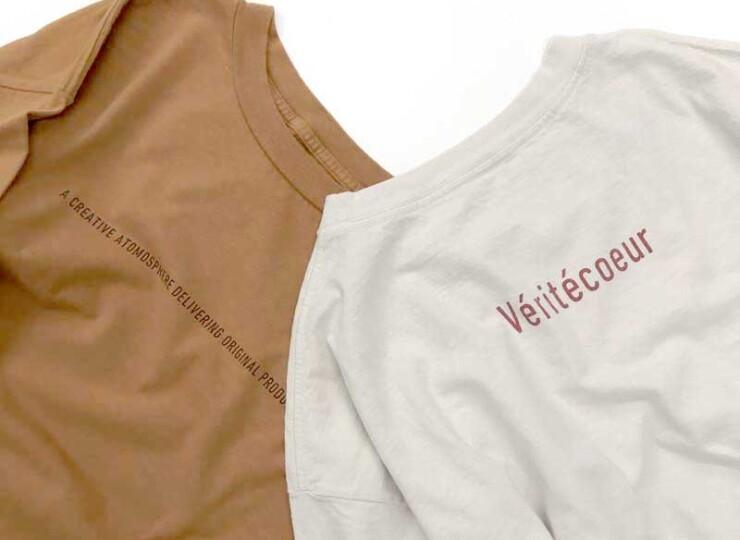 VE-vcc384